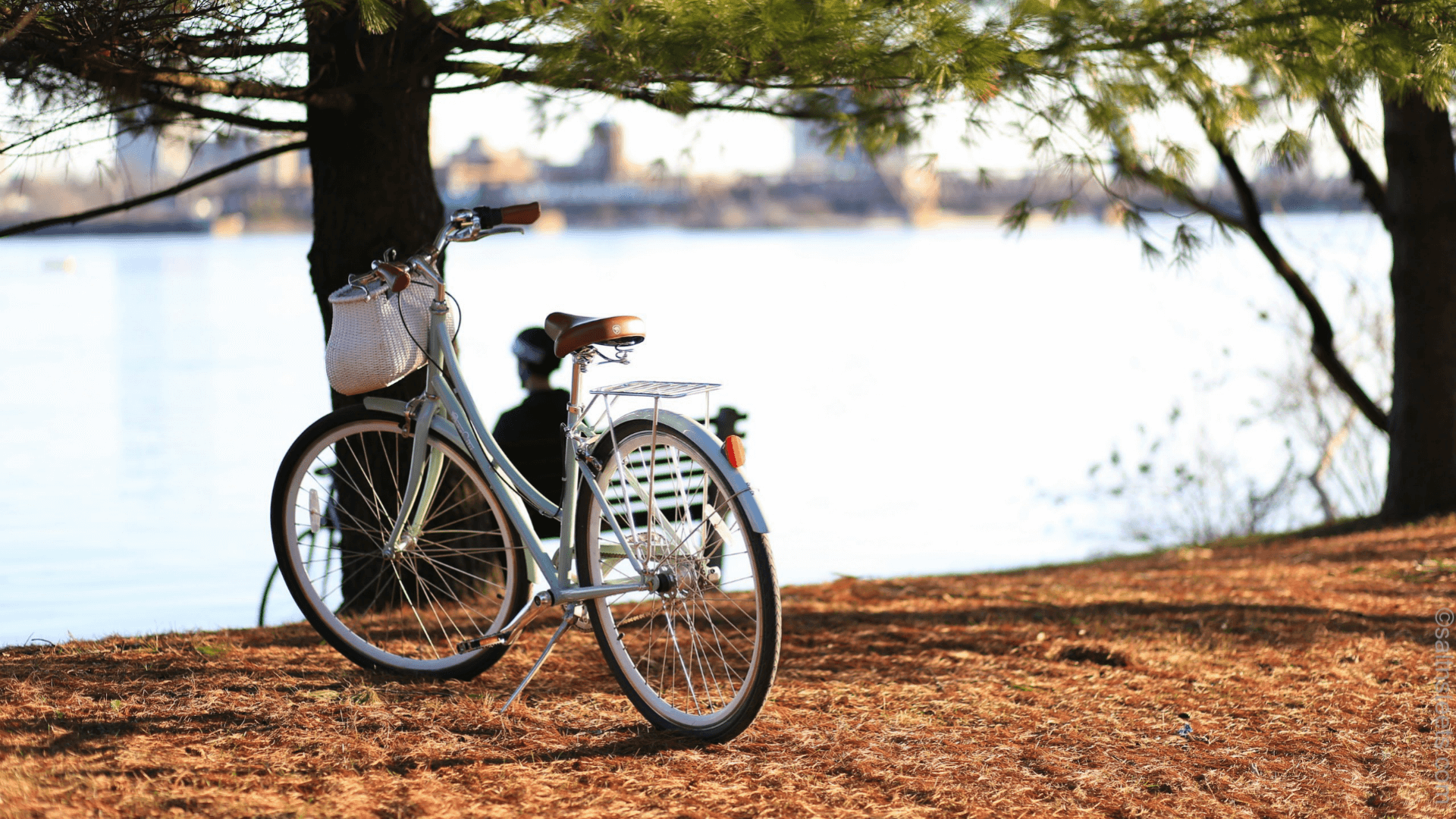 Alternativas à praia - Foto: unsplash